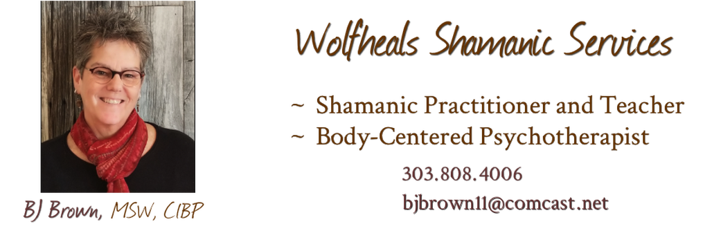 Wolfheals Shamanic Services